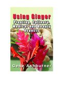 Using Ginger – Planting, Culinary, Medical And Beauty Aspects