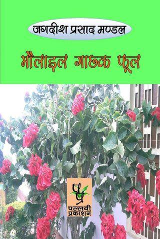 मौलाइल गाछक फूल