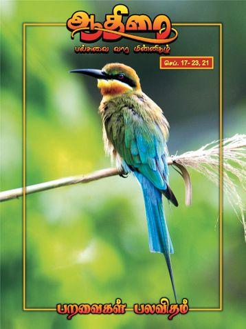 ஆதிரை மின் இதழ் (eBook)