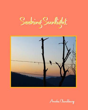 Seeking Sunlight