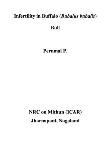 Infertility in Buffalo (Bubalus bubalis) Bull