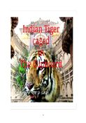 Indian Tiger caged in the Cupboard