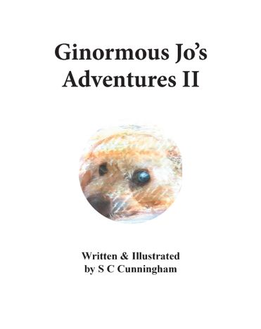 Ginormous Jo's Adventures II - Five Book Set