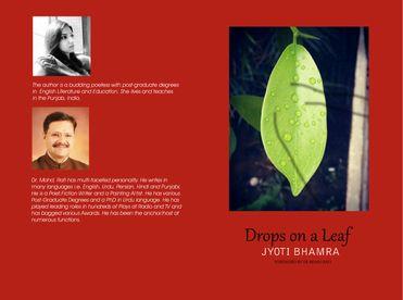 Dropf on a Leaf
