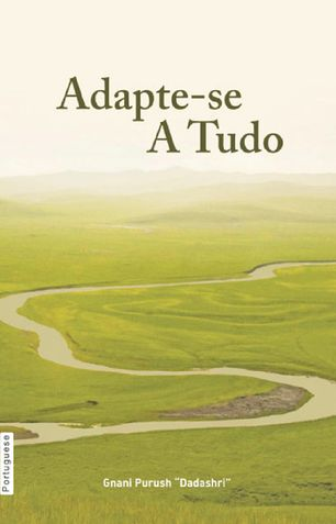 Adjust Everywhere (In Portuguese)