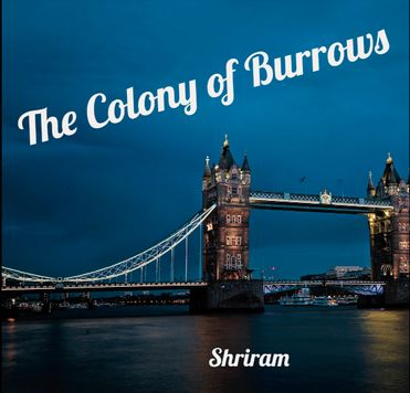 The Colony of Burrows