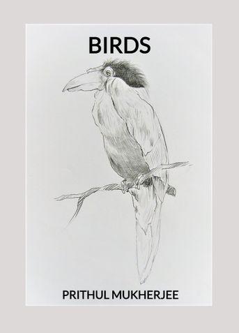 BIRDS: BASIC PRACTICE