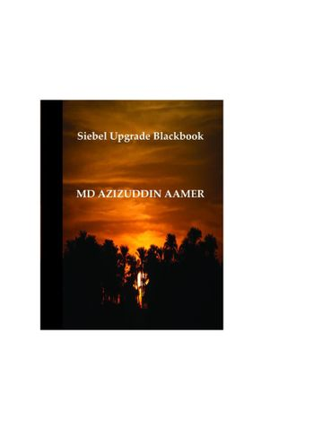 Siebel Upgrade Blackbook