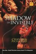 Shadow of invisible