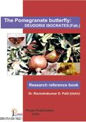 The Pomegranate Butterfly: Deudorix isocrates (feb.)