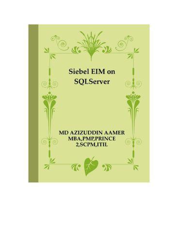 Siebel EIM on SQLServer