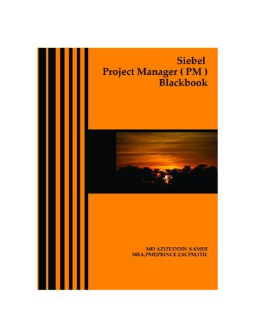 Siebel Project Manager ( PM ) Blackbook